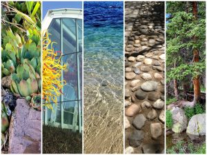 Ways Biophilic Design Promotes Human Health and Well-being