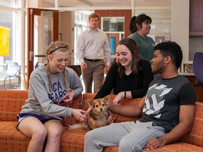 Students with dog in Bear hall