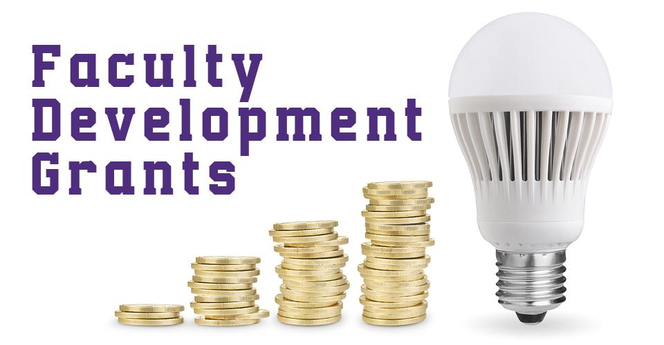 faculty development grants