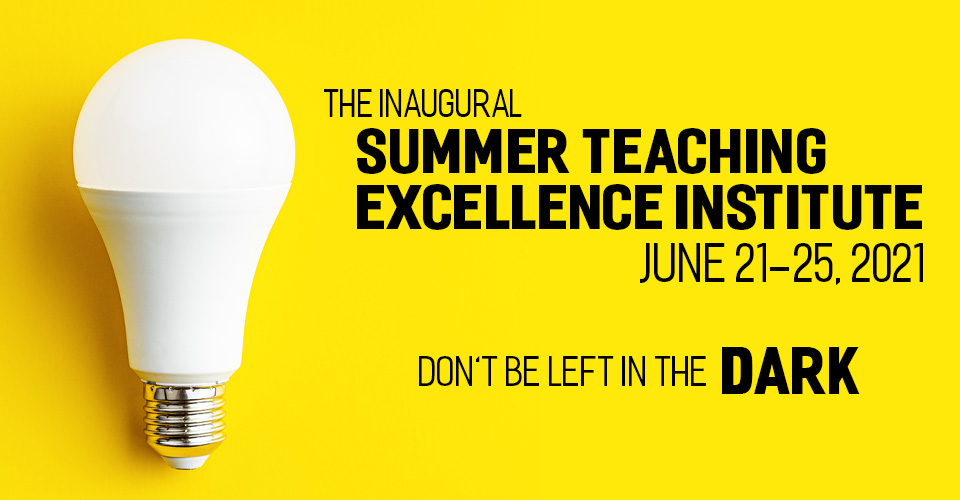 summer teaching excellence institute