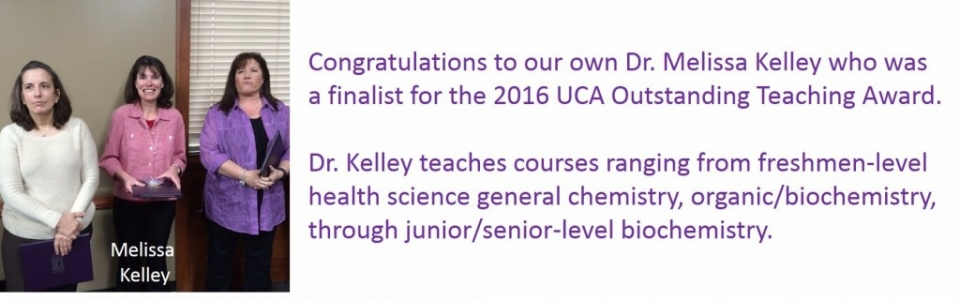 MKelley_finalist2016