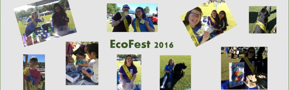 ecofest 3