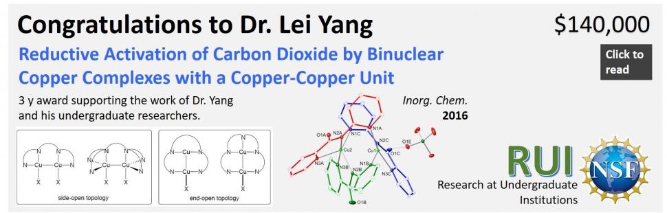 Dr. Yang RUI 12.10.19