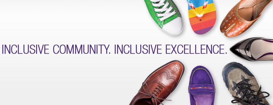 Institutional Diversity Banner