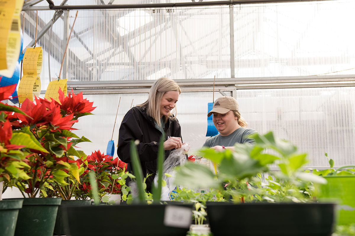 University of Central Arkansas students Abbey Ward and Madison Wingo plant tomatoes at the greenhouse on the UCA campus as part of this year's The Big Event. Ward and Wingo volunteered for The Big Event with other members of their sorority, Alpha Sigma Alpha.