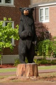 Black bear carving complete