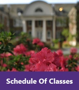 Schedule of Classes For Spring 2020