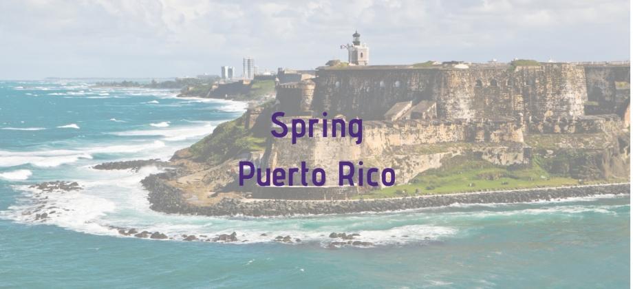 Puerto Rico Button Final